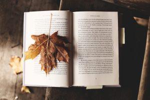 Atelier Thérapeutique Ecriture : Le Revest les Eaux